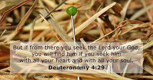 deut 4 v 29